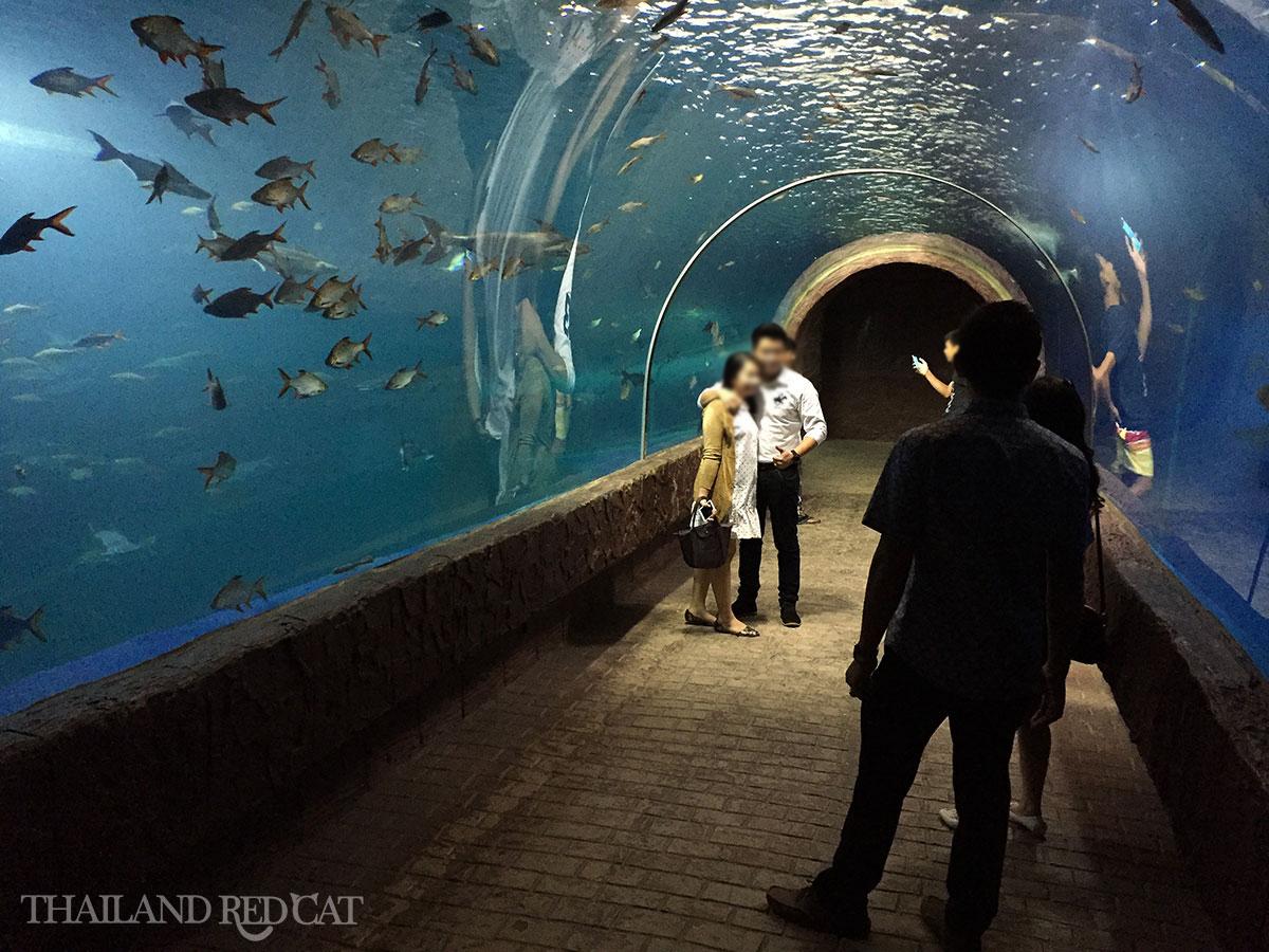 Aquarium in Nong Khai