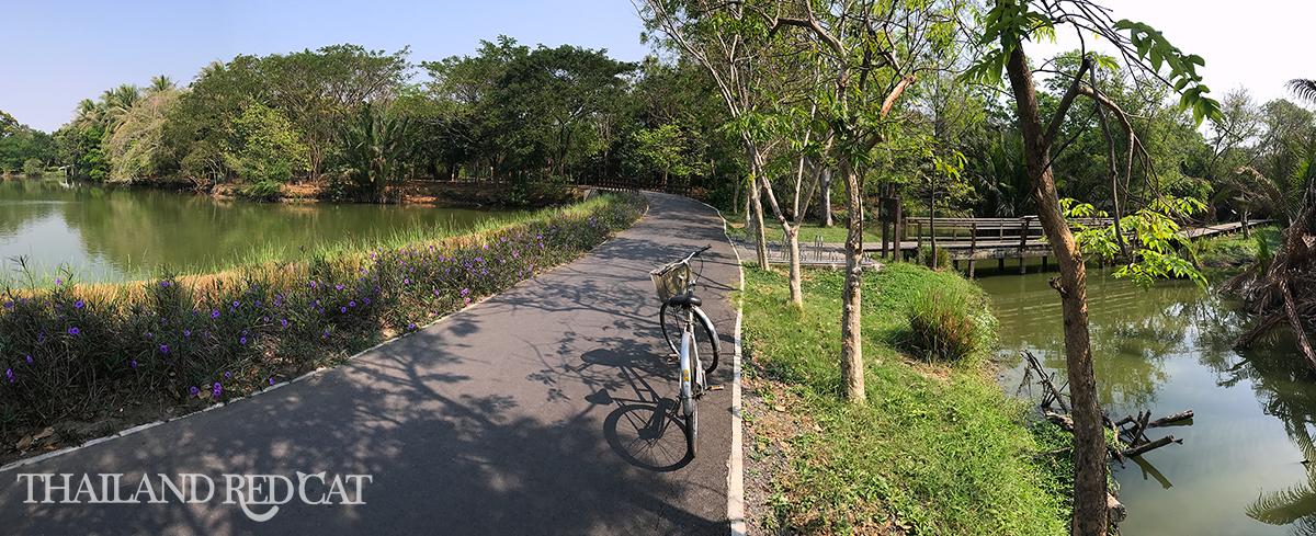 Bang Krachao Botanical Garden