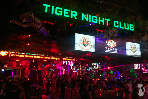 Best Night Club in Phuket