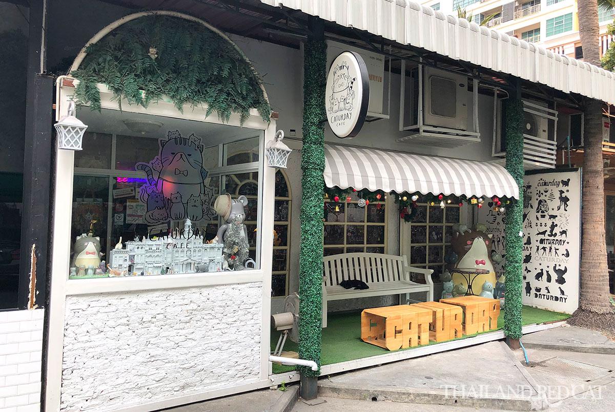 Caturday Cat Cafe Bangkok