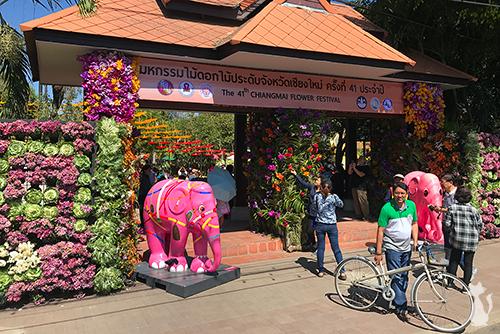 Chiang Mai Flower Festival 2