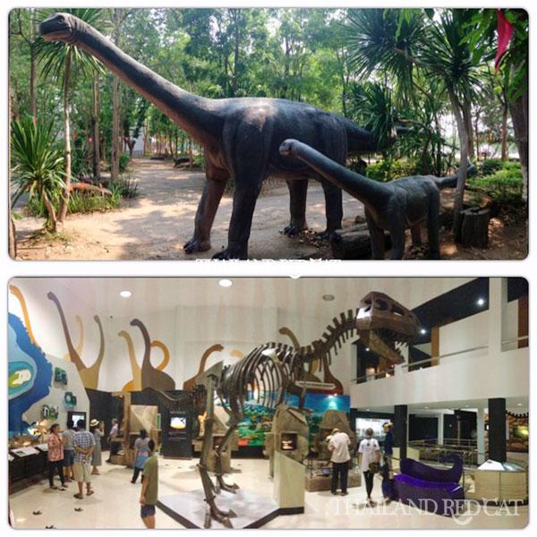 Dinosaur Museum in Khon Kaen