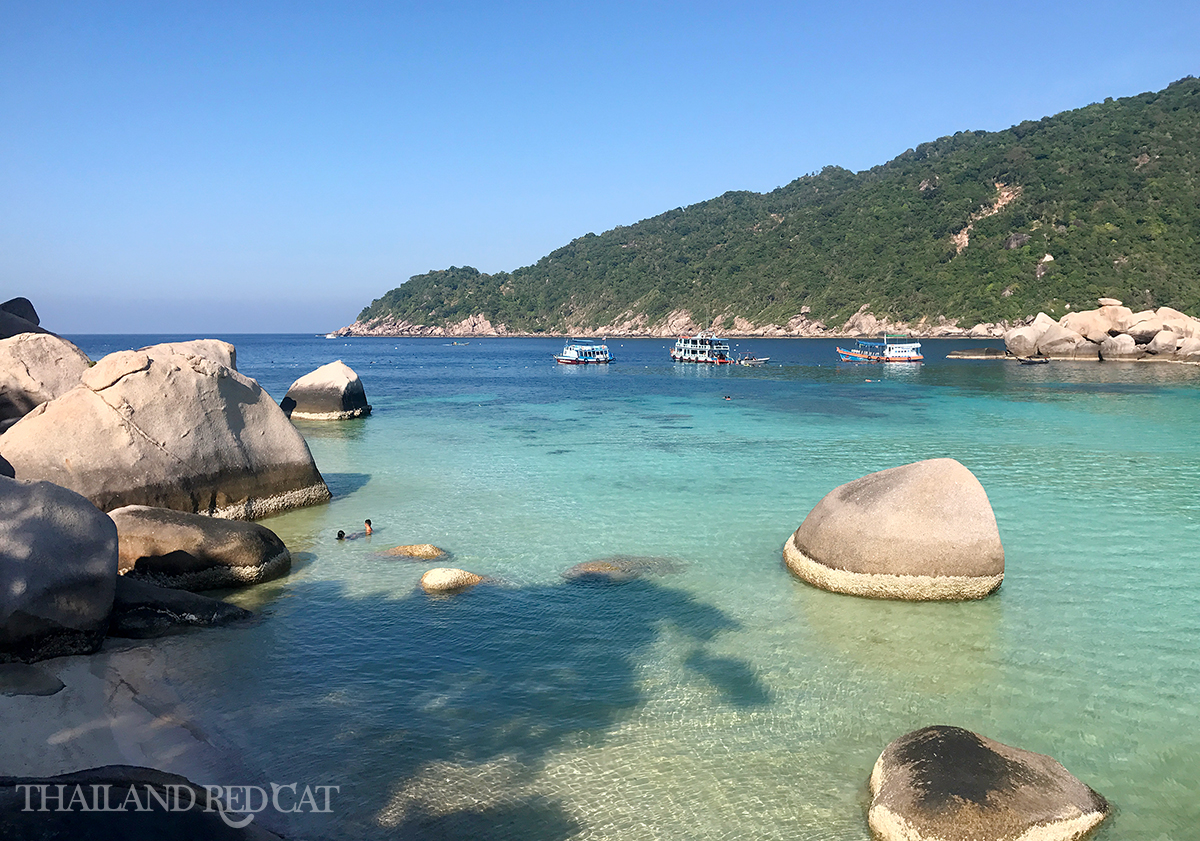 Koh Nang Yuan Swimming