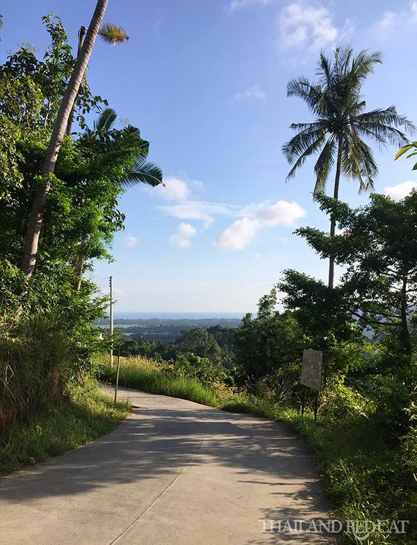 Koh Samui Landscape