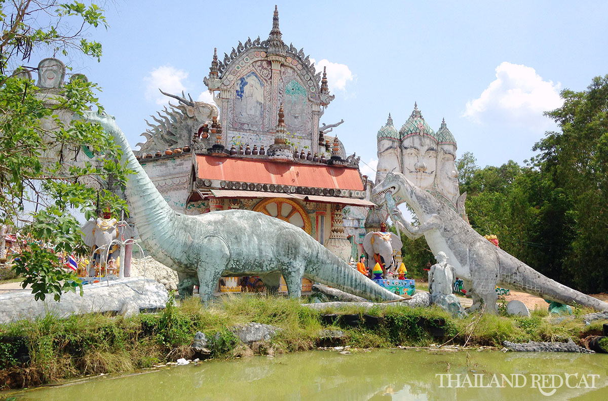 Roi Et Attraction