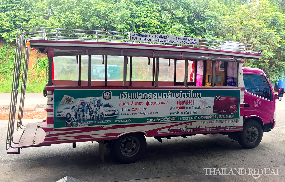 Shared Taxi in Phuket