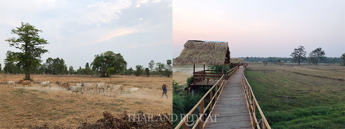 Sisaket Countryside